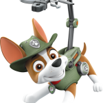 Paw Patrol Perrito 3