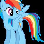 Rainbow Dash My Little Pony 11