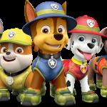 equipo paw patrol 2