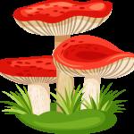 hongos pitufos 04