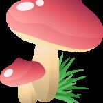 hongos pitufos