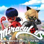 Imágenes de Miraculous PNG