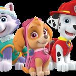 paw patrol personajes 4