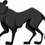 Mickey Safari Pantera