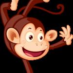 Mono Mickey Safari 5