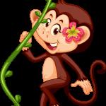 Mono Mickey Safari 6