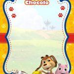fondo invitacion perro chocolo01 2