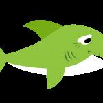 Baby Shark 16