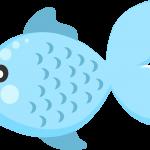 Baby Shark 56