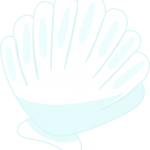 conchar mar 13 megaidea