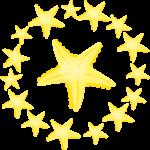 estrella mar 10 megaidea