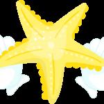 estrella sirenita 09 megaidea