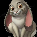princesa sofia13 conejo megaidea
