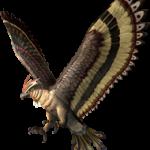 Falco Transparente