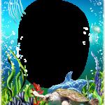 marco oceano