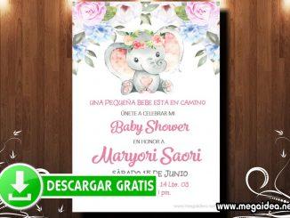 Baby Shower Girl Elefante Invitacion