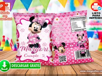 Minnie Mouse ChipsBags 1