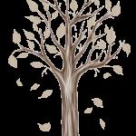 arbol del bosque