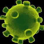 coronavirus05