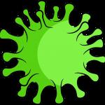 coronavirus06
