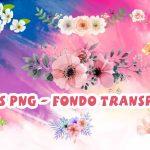 Flores PNG Fondo Transparente