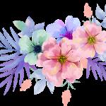 flores sin fondo megaidea