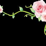 flores sin fondo megaidea net