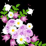 flores sin fondo rojo megaidea234
