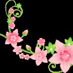 flores sin fondo rojo megaidea666