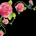 flores sin fondo rojo megaidea777