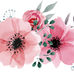 flores sin fondo55 megaidea