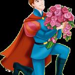 princesa aurora principe 28