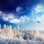 35 Invierno Maravilloso