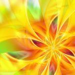46 Abstact Flower