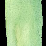 imagenes acuarela verde34343