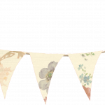 banderines 4 1