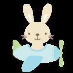conejo 1