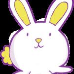 conejo 2 1