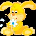 conejo 3 1