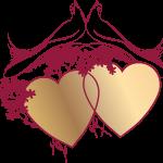 corazon 14