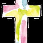 cruz 42