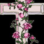 cruz 61