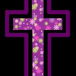 cruz 73