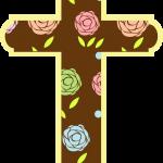 cruz 8