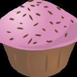 cupcakes chocolate 12