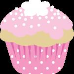 cupcakes chocolate 24