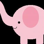 elefante 16