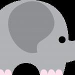 elefante 17