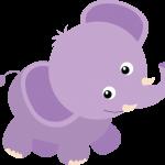 elefante 21