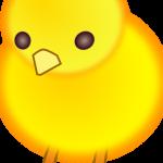 pollo3